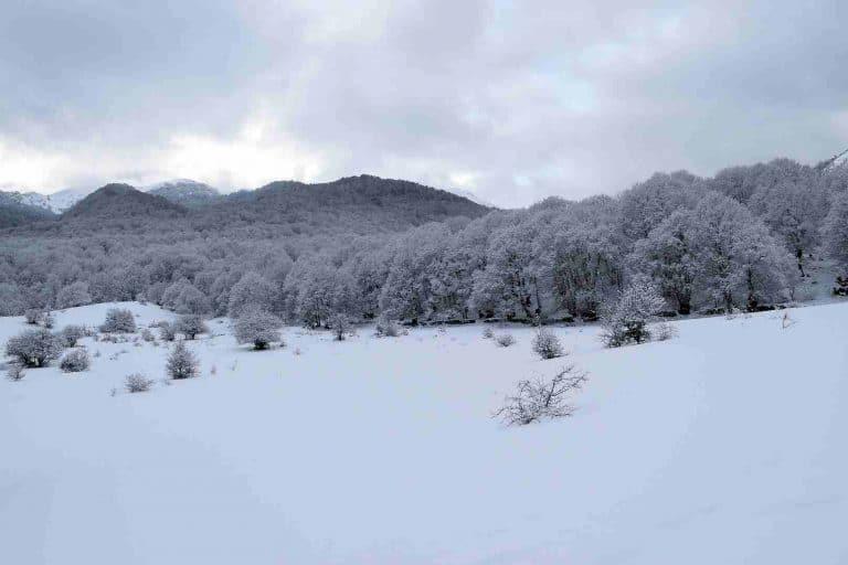 Ciaspolata nel Parco nazionale d'Abruzzo