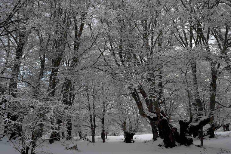 Difesa di Pescasseroli in Inverno